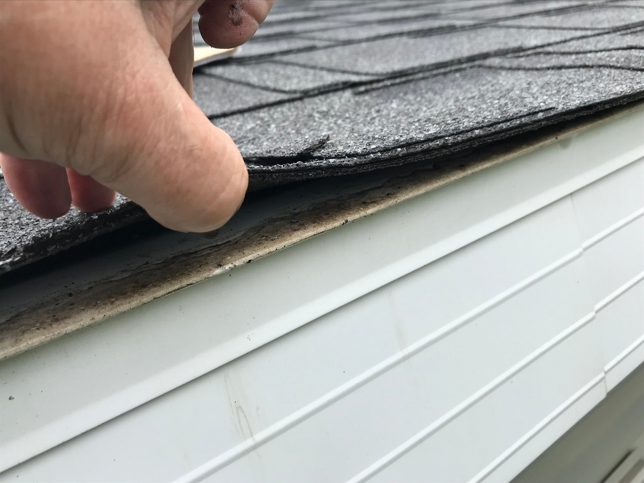 Do a roof inspection